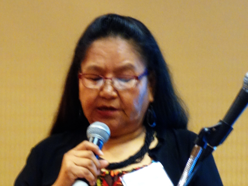 Katherine Sisto, Community Health Representative for the San Carlos Apache Tribe talks about her role as a community health worker. AzCHOW Conference 2016